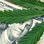 marijuana profits